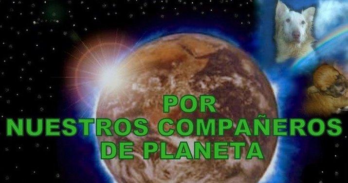 POR NUESTROS COMPAÑEROS DE PLANETA