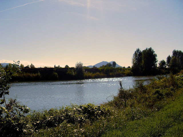 colli euganei, euganean hills #sky #summer #italy #holidays #nature #landscape #vineyards estate, autunno, ragazza, girl, dress, vestito, vintage, pull&bear, love, ragazzo, boy, boy and girl, romantic, cute