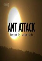 Cuộc Tấn Công Của Loài Kiến - Bbc Natural World - Ant Attack