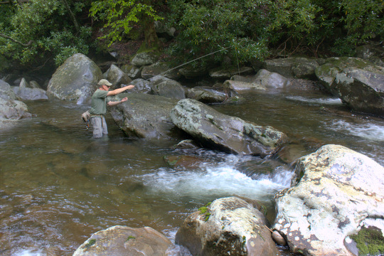 Brook Trout fishing in the Great Smoky Mountains
