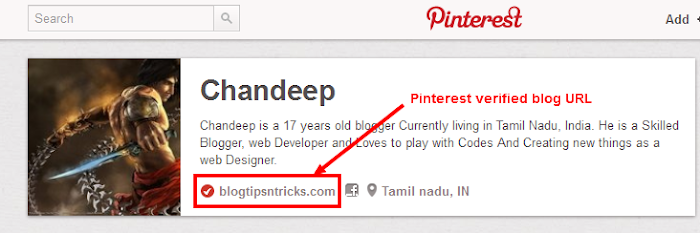 success verification pinterest profile