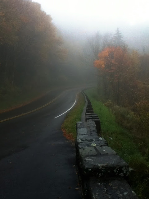 Fog on the Blue Ridge Parkway
