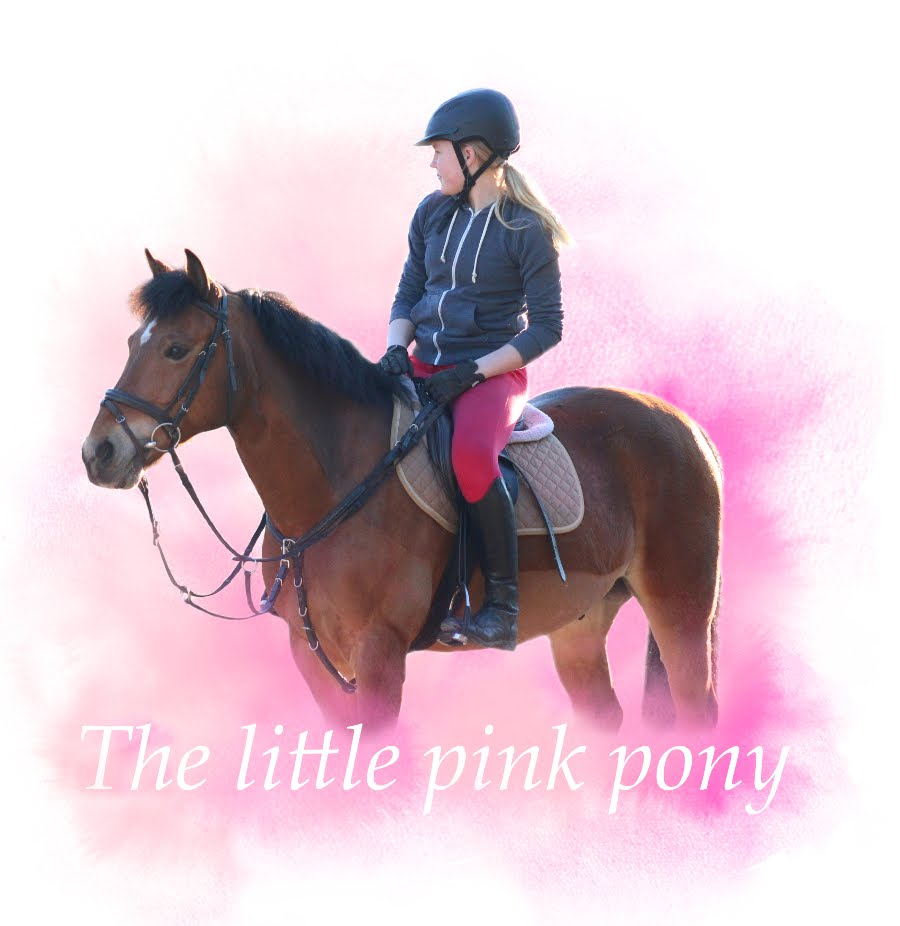 The Little Pink Pony