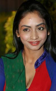 Actress Pooja Sri  Pictures in Salwar Kameez at AIINA Women Awards 2014 Curtain Raiser  4