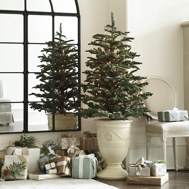 Beyond The Portico December 2015. Where To Put The Christmas Tree