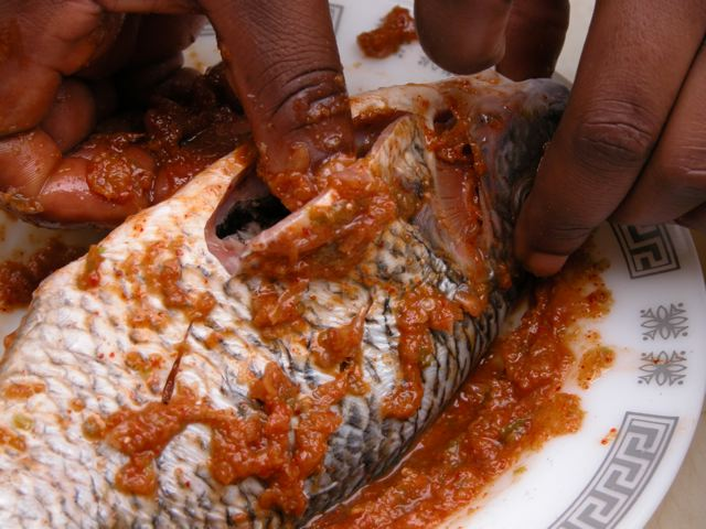 Betumiblog great grilling recipes 58 grilled tilipia and 59 clean and wash the fish and descale it if necessary leave on the heads but remove the gill covering and hard fins please note that this like pounding forumfinder Choice Image