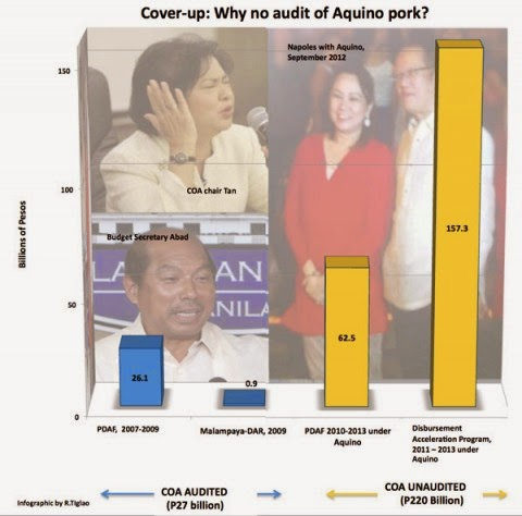 bar graph of  unaudited  DAP from 2011 to 2013