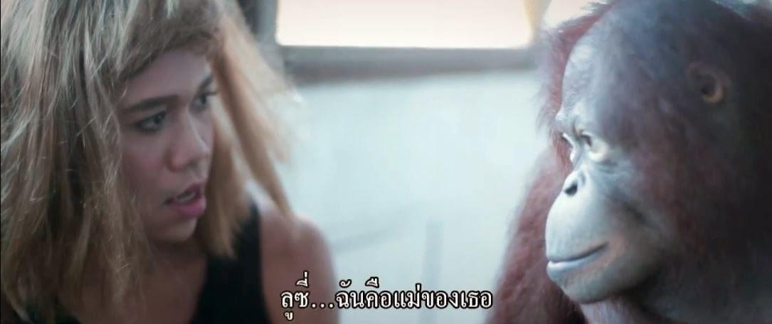 massage thailandais sexe massage de femmes