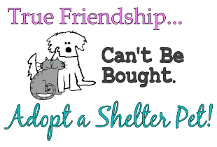 Help save shelter animals