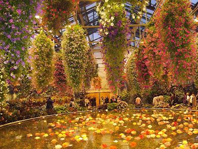 なばなの里・アンデスの花園・ベゴニアガーデン