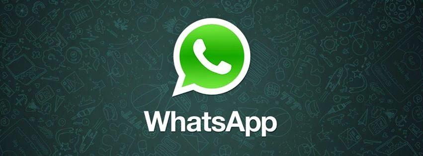Suporte ao profissional WhatsApp-