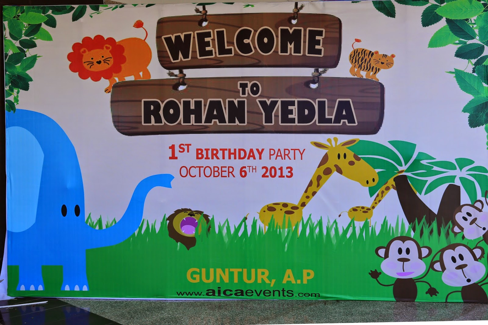 Aicaevents India Jungle Theme Birthday party Decorations