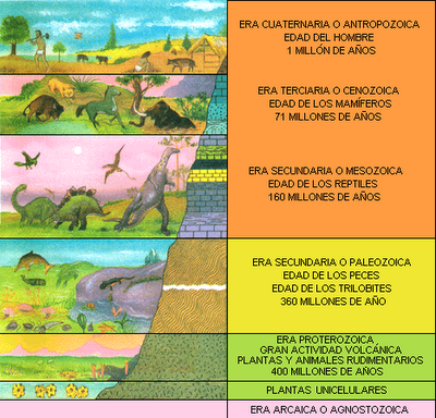 Eras Geologicas de la Tierra Biograf a de la Tierra Eras