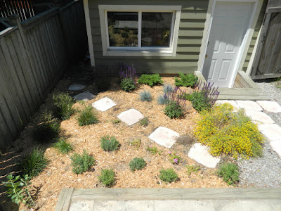 Leslieville xeriscape garden install after by Paul Jung Gardening Services Toronto