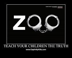 Οι ζωολογικοί κήποι δεν έχουν εκπαιδευτικό χαρακτήρα...