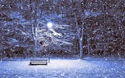 Wintery Quietness
