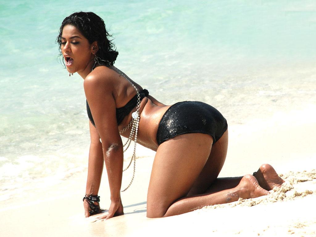 mumaith khan bikini pics lap packed