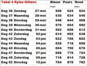 Gew Tabel 4:Kittens Rylee