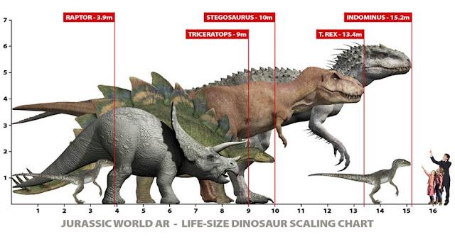 Pin Dinosaur Size Chart on Pinterest