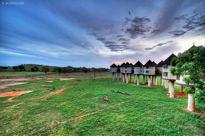 Sarova Salt Lick Game Lodge Photos