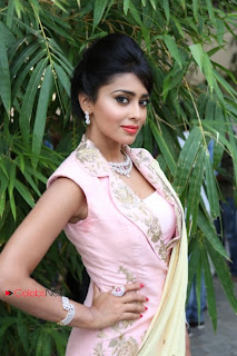 Shriya Saran Latest Pictures in Sylish Dress at Vogue Fashion Show  0007.jpg