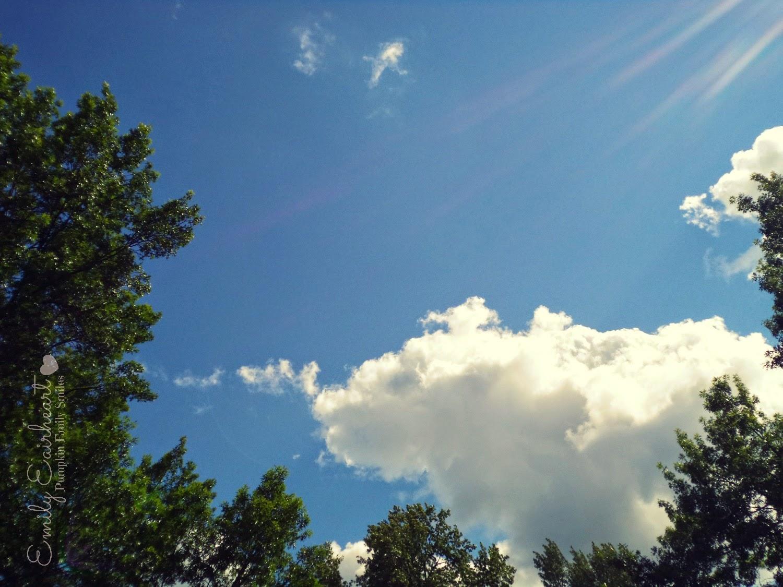 Clouds that look like a hippopotamus.