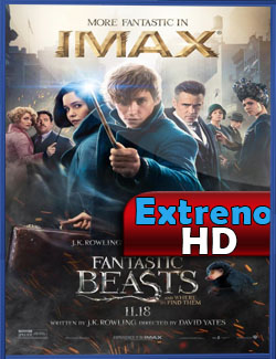 http://3.bp.blogspot.com/-FiuGNeLvEGQ/WIJb3DSF51I/AAAAAAAALDc/pwfFfLcNe40DuPQ_b0qrZ0ai1xy1J1jsACLcB/s1600/fantastic_beasts_and_where_to_find_them-229500301-large.jpg