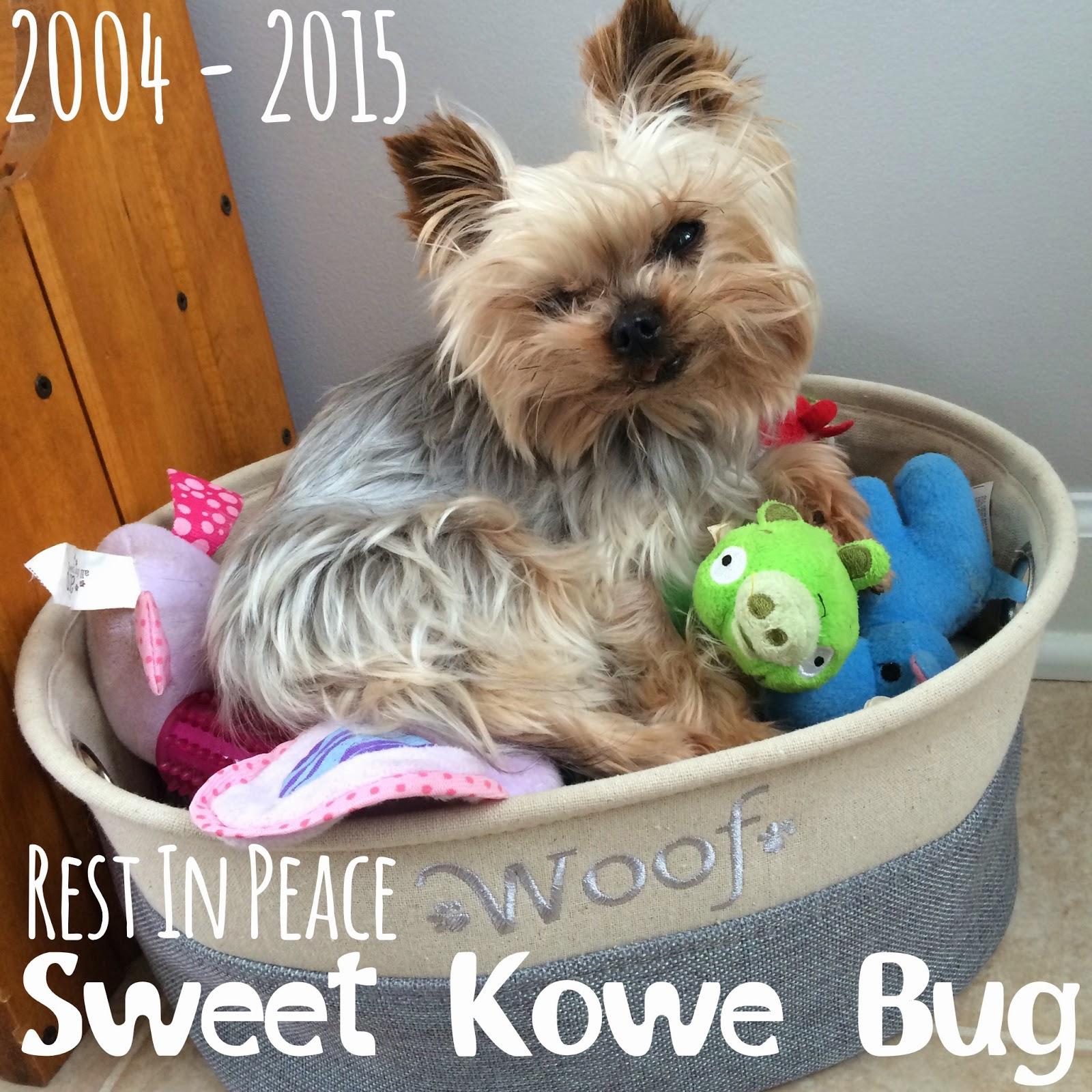 RIP Goodby Kowe Pet Loss