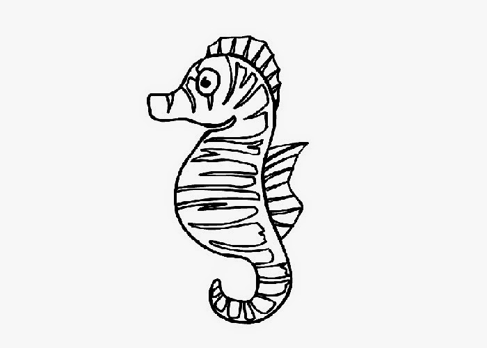 baby seahorses coloring pages - photo#4