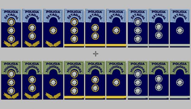 Resultado de imagen para jerarquia policia municipal