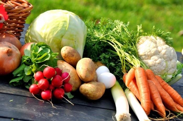 лучшие овощные диеты