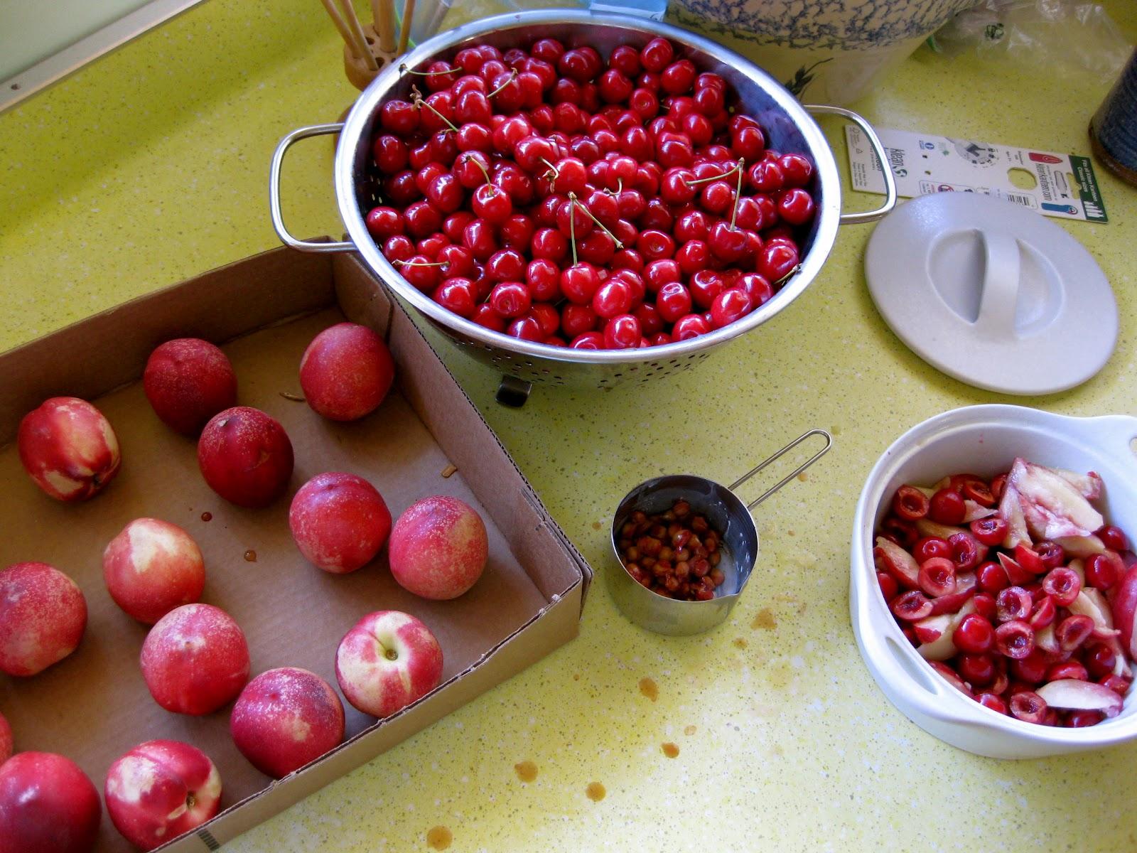 Farm Girl Blog: Solar Cherry Crisp....Bear-ly