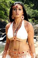 http://spicy-jet.blogspot.com/2013/01/anushka-new-film-alex-pandian-hot-photos.html