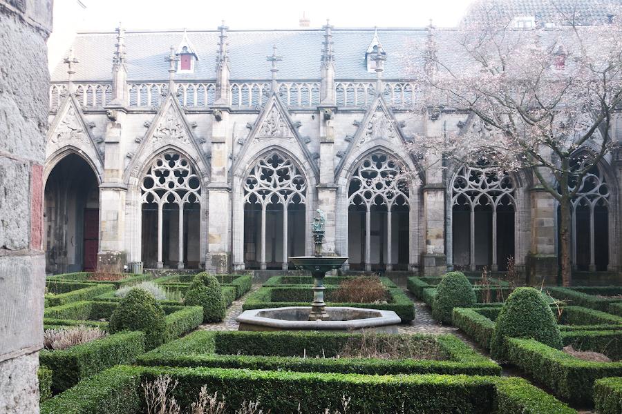 Exploring the Netherlands: Utrecht
