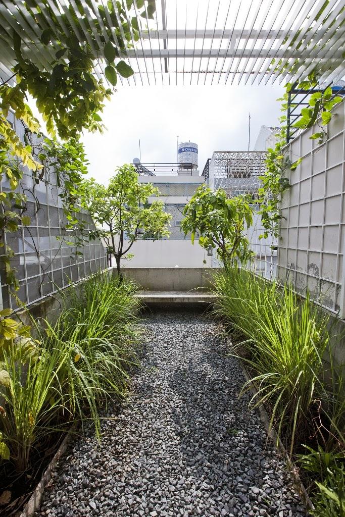 Roof Garden Rumah Mungil 3x10 Meter