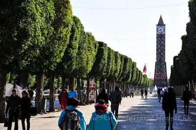 突尼斯 Tunis