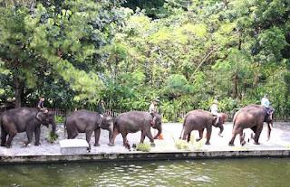 Gajah Gembira Loka