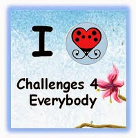 Challenges4Everybody