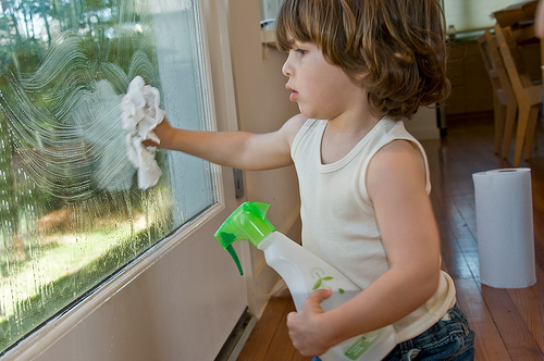 DIY Window Cleaner (Without Ammonia) - American Preppers Net