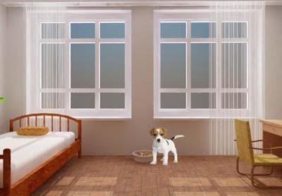 Sweet Dog House Escape