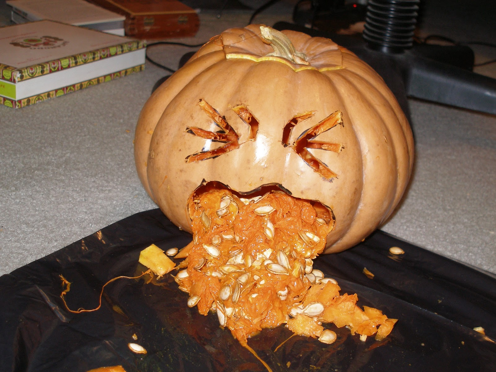 Pumpkin Throwing Up Beer Viewing Gallery