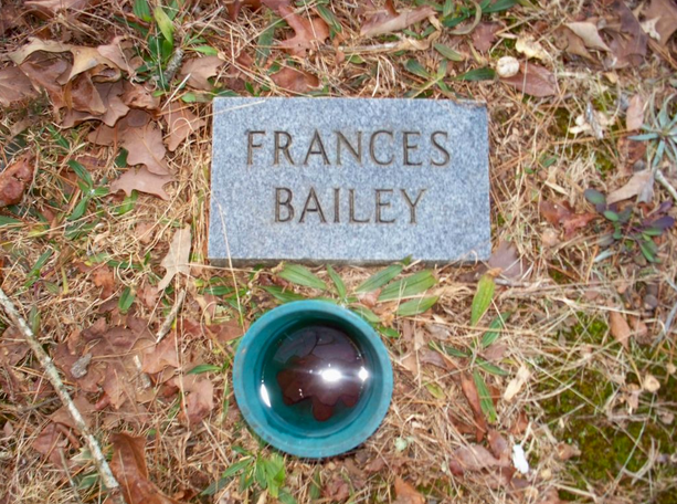 Frances Rainwater Bailey, Blooming Grove Cemetery, Polk County, Georgia