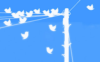 twitter birds on the wire