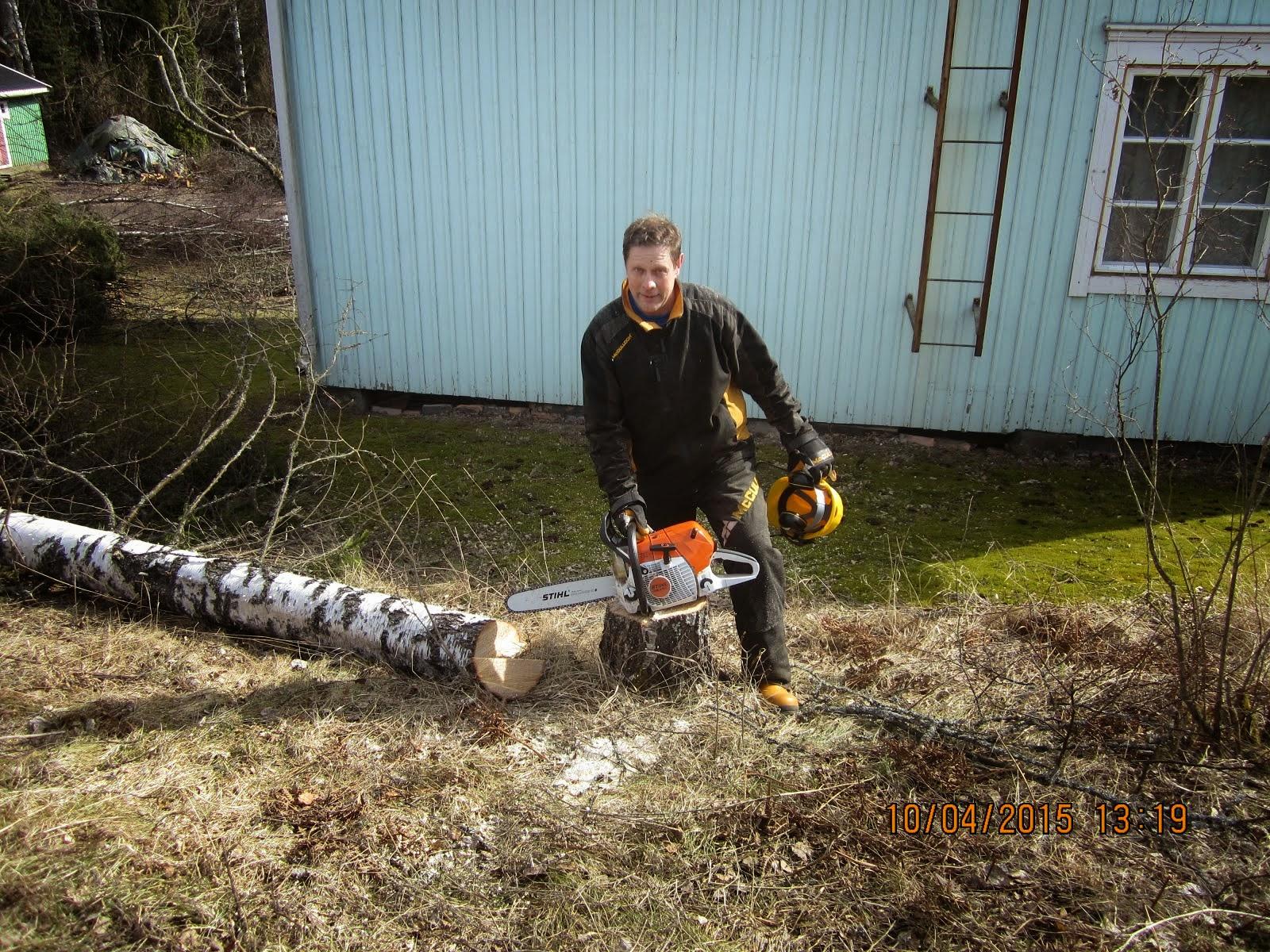 Pihapuiden kaadot, omenapuiden leikkaukset, pihatyöt Tampere Pirkanmaa