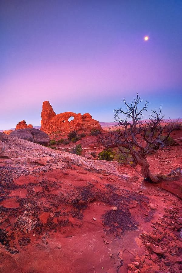 Cute Landscape Photography by David Richter