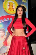 Sonal Chauhan Sizzling at Size Zero Premier-thumbnail-4