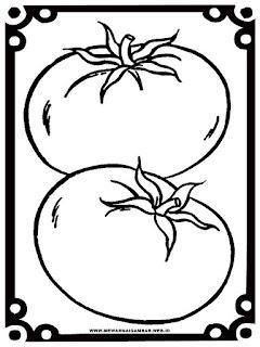 gambar tomat untuk mewarnai