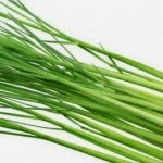 How lemongrass Planting of Bulbs - Gardening Tips