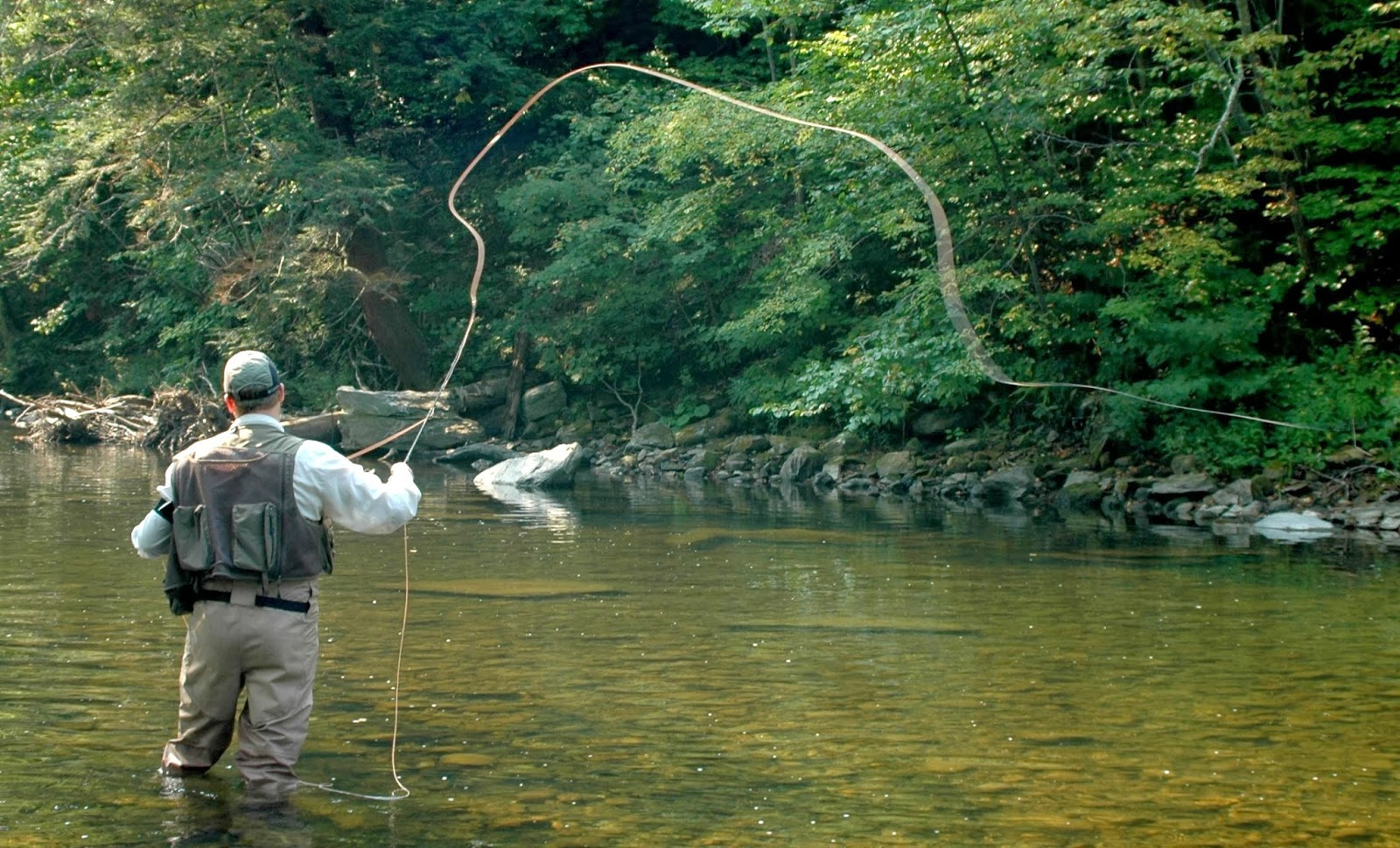 Download image Fly Fishing Fish PC, Android, iPhone and iPad ...
