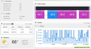 Swimming Training - Garmin Connect Dashboard Energia Sports
